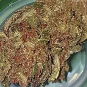 Strawberry Tangie Sativa Strain